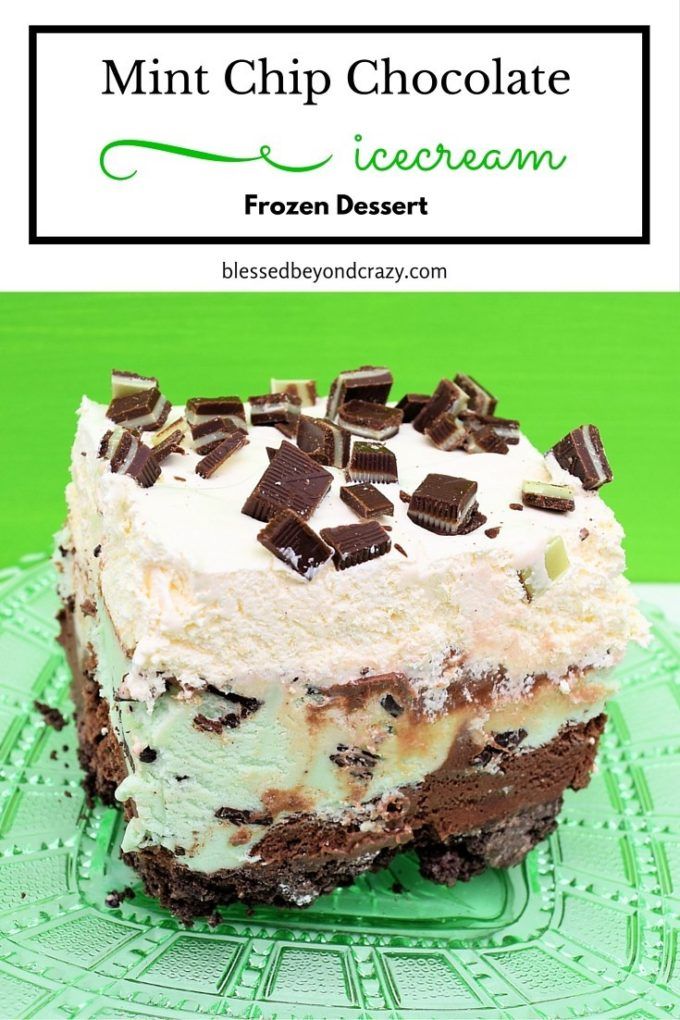 Frozen Mint Chocolate Chip Dessert