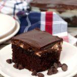 Best Ever Mississippi Mud Cake Recipe