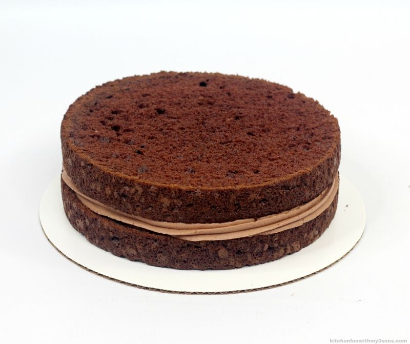 2 layers of chocolate cake