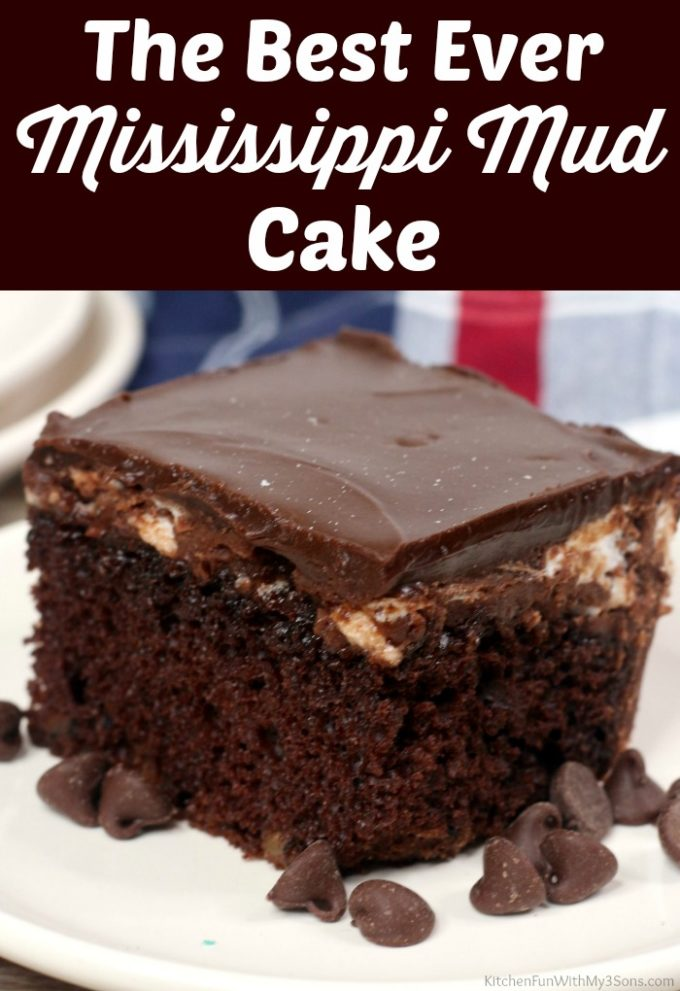 Best Ever Mississippi Mud Cake