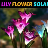 Lily Flower Solar Lights