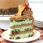 Mint Chocolate Chip Layered Cake