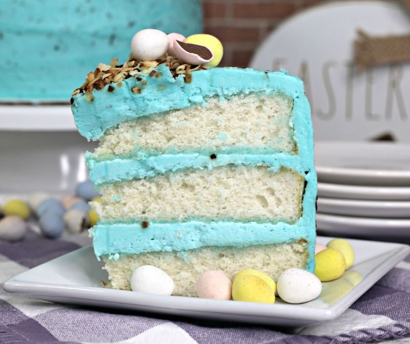 Robin Egg Homemade Layer Cake