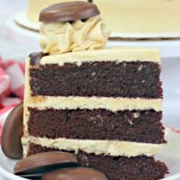 Tagalong Cake