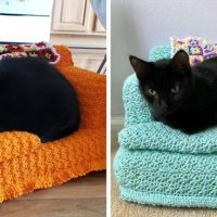 Crochet a Tiny Couch for Your Cat!