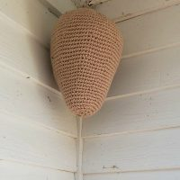 Crochet Nest Keeps Hornets Away for Years