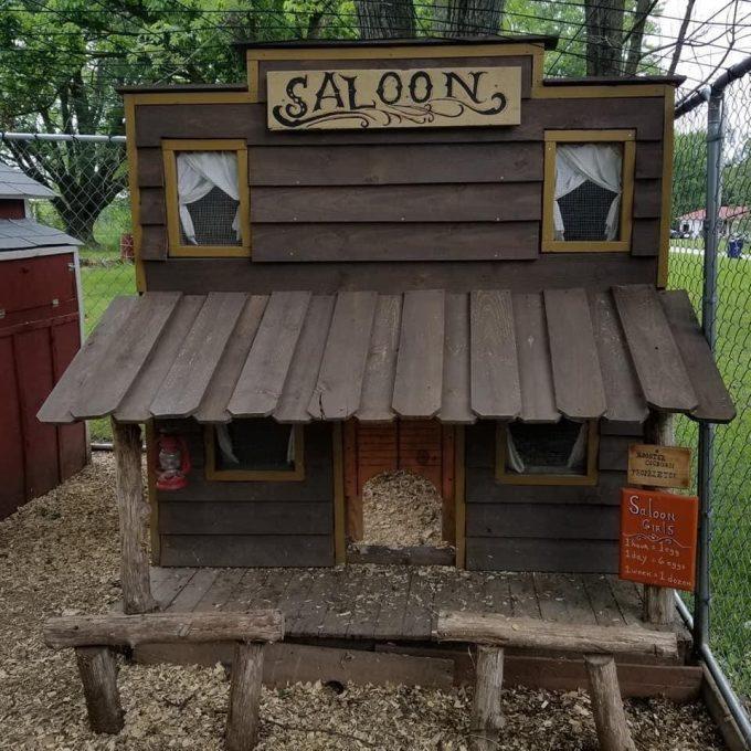 Chicken Cook Saloon