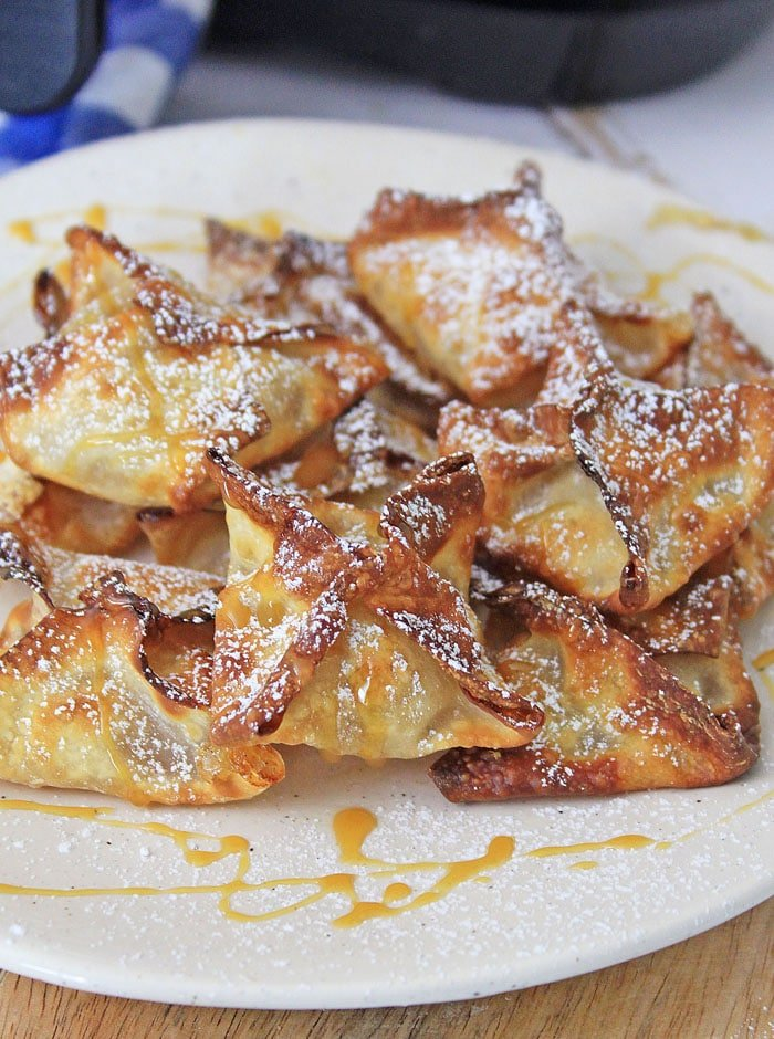 Apple Air Fryer Wontons