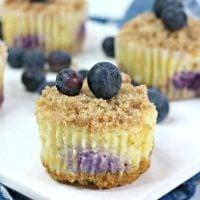 Mini Blueberry Crumble Cheesecake Bites