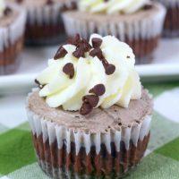 Chocolate Mousse Cheesecake Bites