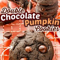 Double Chocolate Pumpkin Cookies