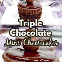 Triple Chocolate Mini Cheesecake