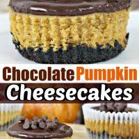 Mini Chocolate Pumpkin Cheesecakes