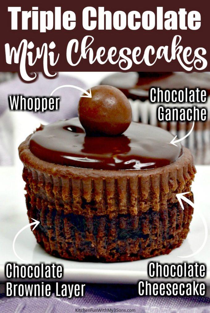 Triple Chocolate Mini Cheesecakse