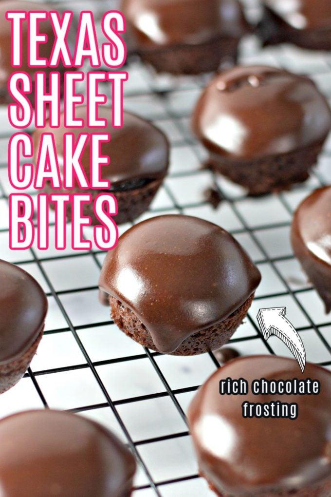 Texas Sheet Cake Bites on Pinterest
