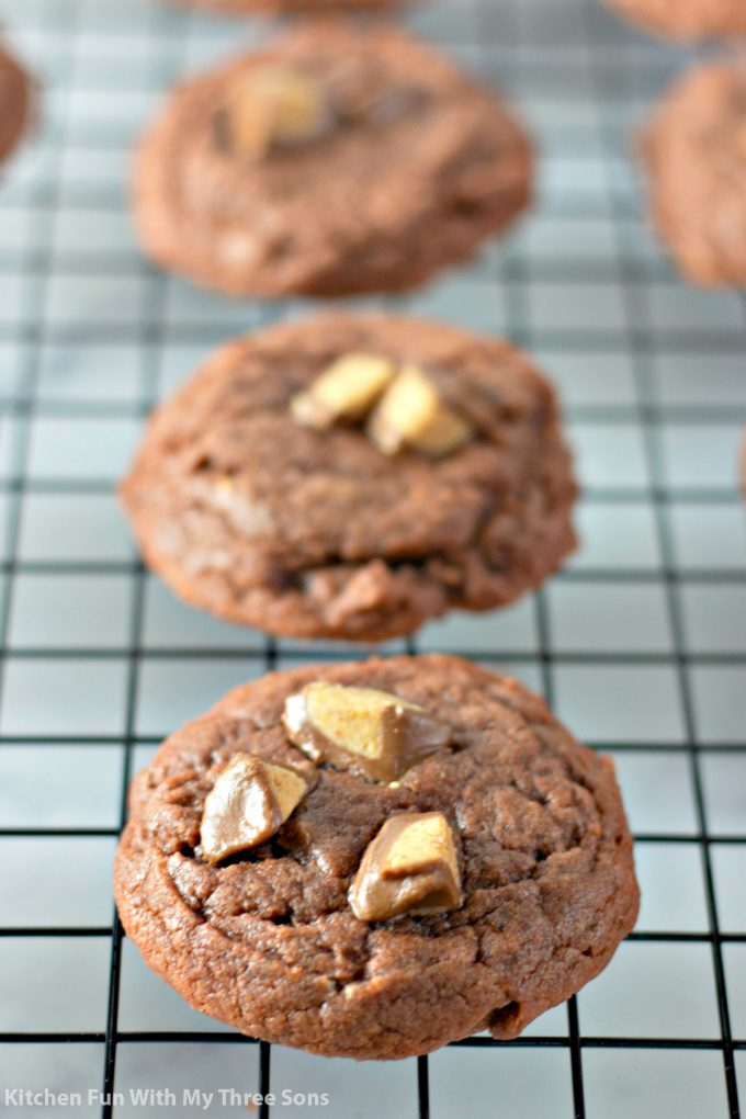 freshly baked chocolate cookies with peanut butter cups