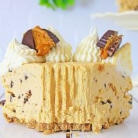 No-Bake Peanut Butter Chocolate Chip Cheesecake