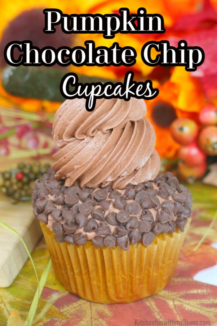 The title Pumpkin Chocolate Chip Cupcakes in black and white lettering.