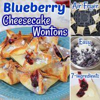 Blueberry Cheesecake Wontons