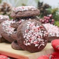 Chocolate Peppermint Mocha Coo