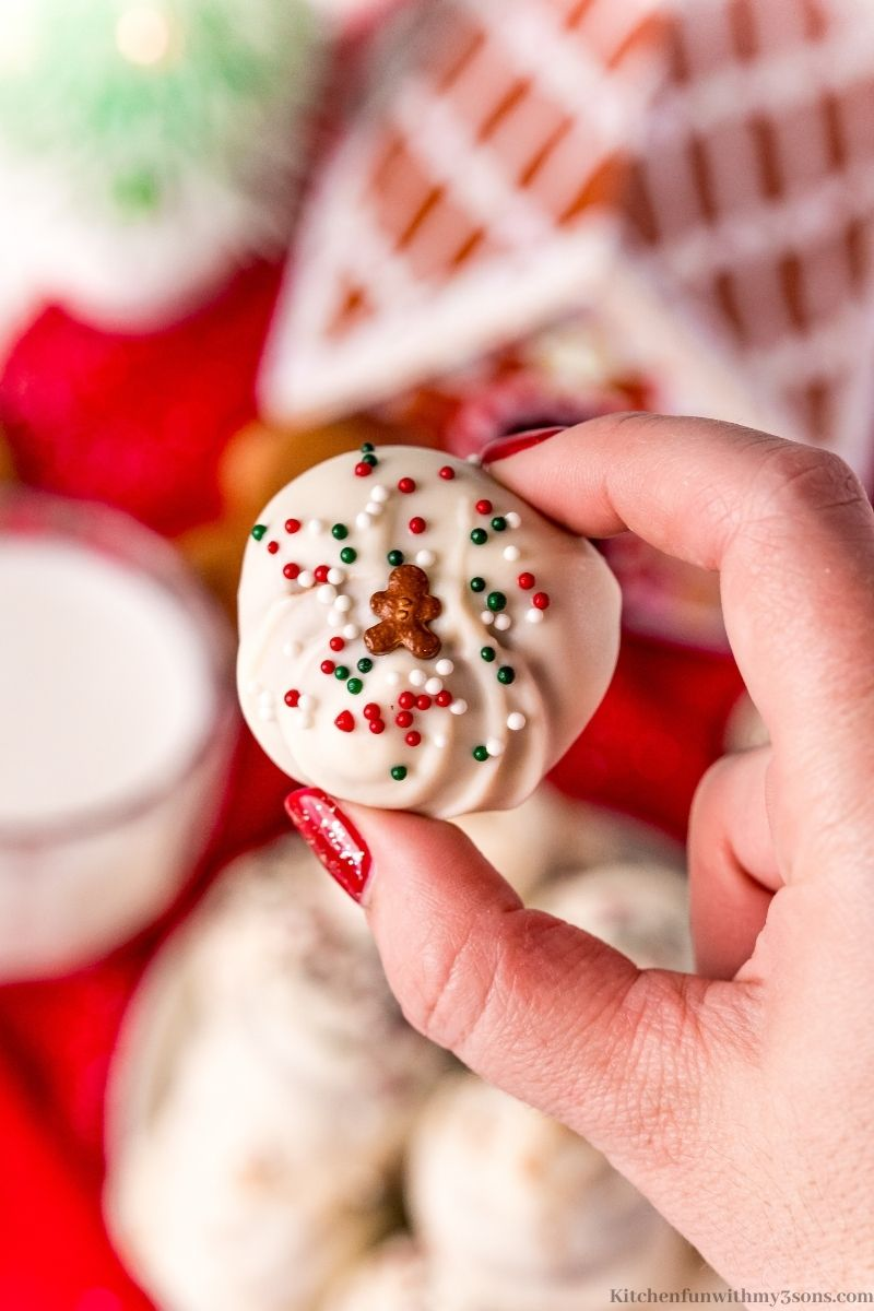 A hand holding one of the Gingerbread Truffles.