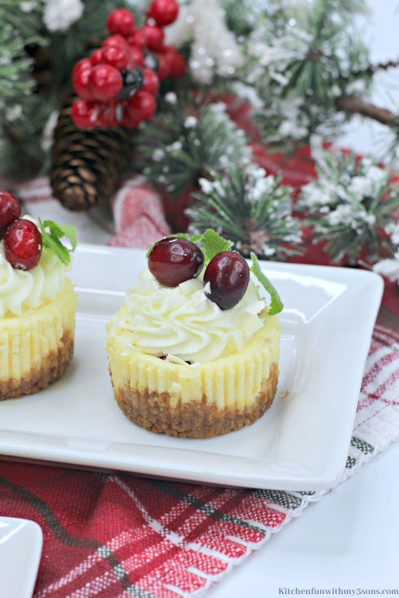 Mini White Chocolate Cranberry Cheesecake on a patterned cloth.