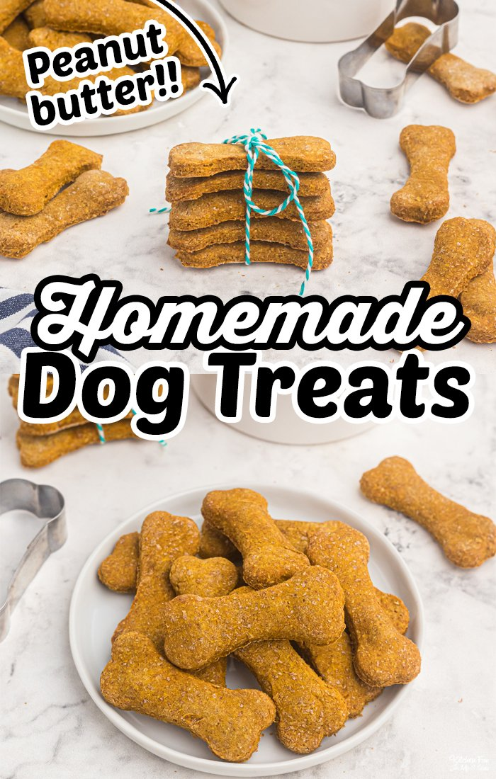 Homemade Dog Treats that pups adore! An easy recipe with peanut butter, pumpkin and absolutely no preservatives or questionable ingredients. #Dogs #Recipes #DIY