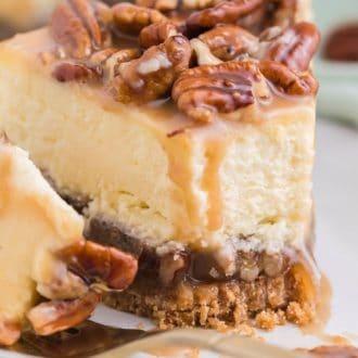 Pecan Pie Cheesecake bite