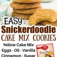Snickerdoodle Cake Mix Cookies